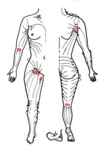出張ホスト幻が提供するアロママッサージのリンパ経路図画像